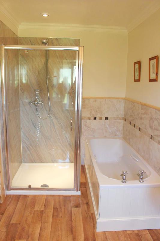 En-suite bathroom with walk in Aqualisa shower, loo, wash-hand basin and bath.