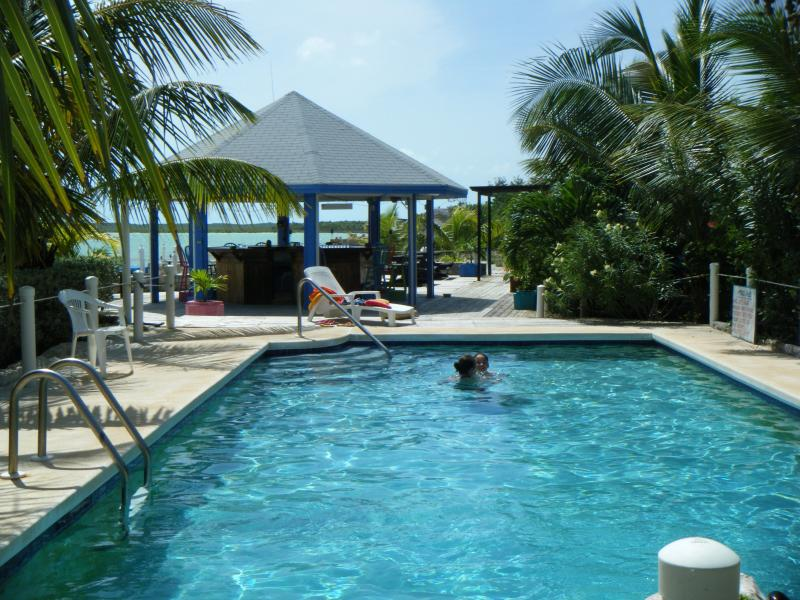 the swimming pool at the Cays