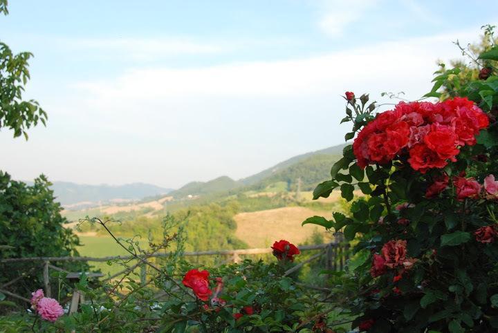 Panorama sulle colline del Montefeltro