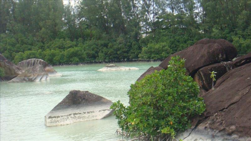 Mountain View Coco De Mer villa, location de vacances à Île de Mahé