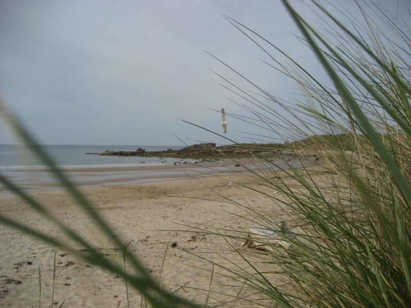 Quiet, clean, safe beach at Hopeman, 10 miles from the cabin