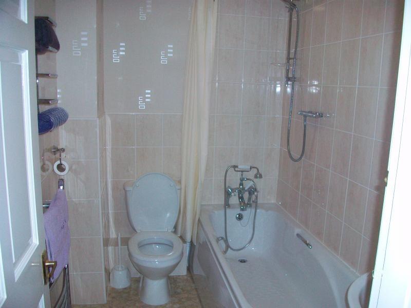 New bathroom with powerful shower over the bath