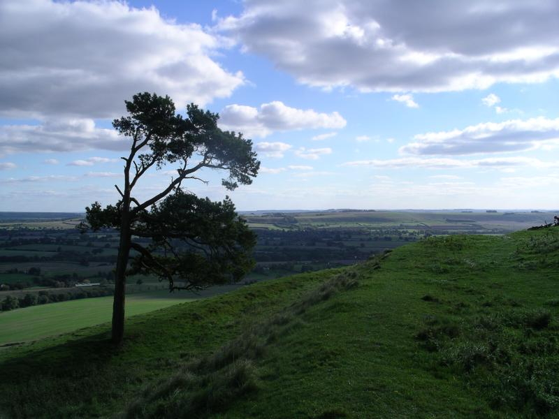Top of Martinsell Hill