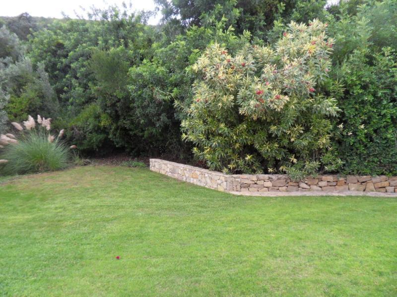 The lawned side garden