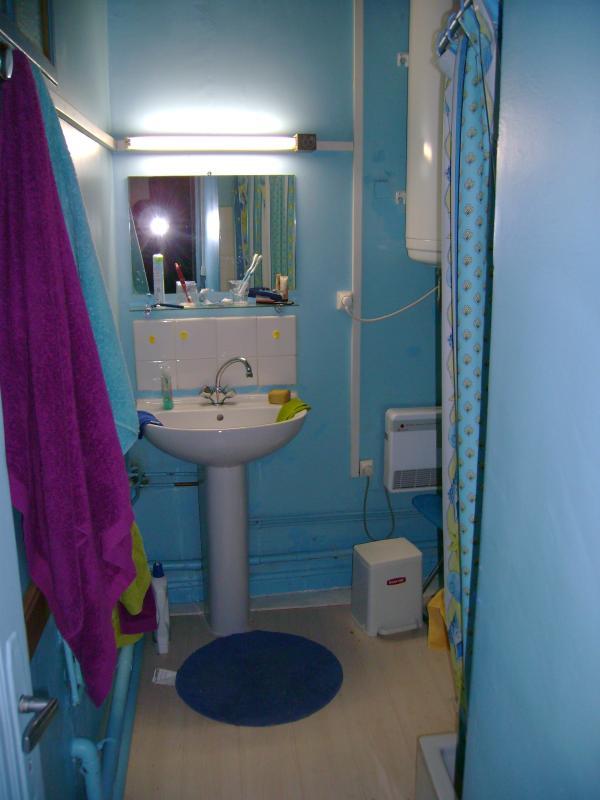 Bathroom 1 with shower, washbasin and bidet