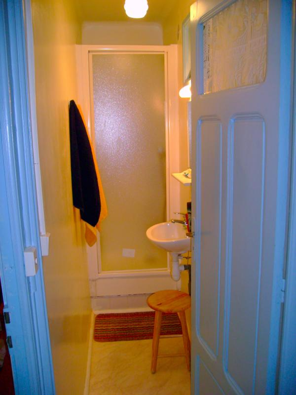 The second bathroom with shower and washbasin