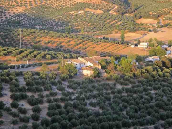 View of Cortijo Los Hidalgos from 'ridge walk'