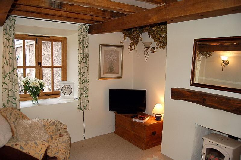 Lovely living room with woodburner!