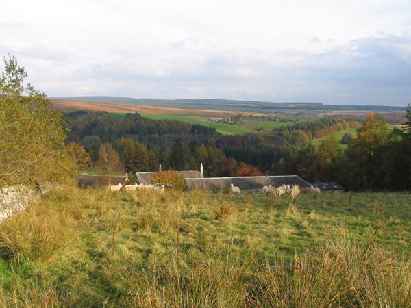 A view of the house and the Esk Valley from the top field.