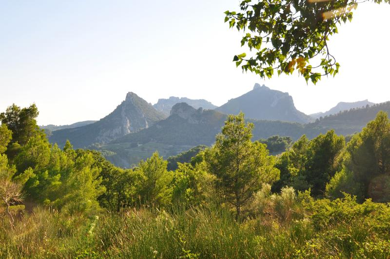 Landspace around us - Dentelles de Montmirail
