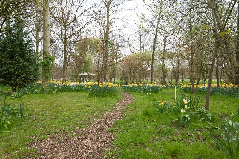 walk down to the river through the woodland