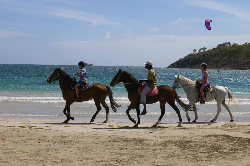Paardrijden op Cas nl Bas strand