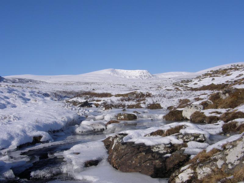 Escena de invierno sólo a pocos minutos de la cabaña.