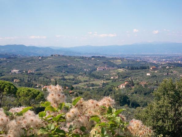 Agriturismo Capiteto, holiday rental in Impruneta