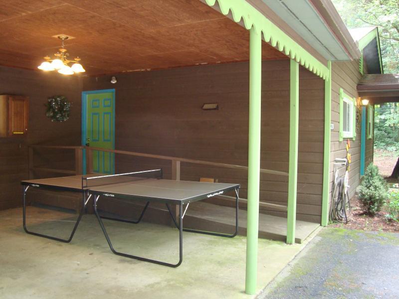 Mesa de Ping Pong con paletas & bolas debajo de cubierta