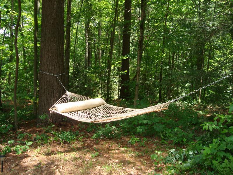 Relajarse en su hamaca bajo la sombra de los árboles.