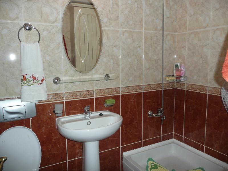Bedroom 3-En suite (Second Floor)