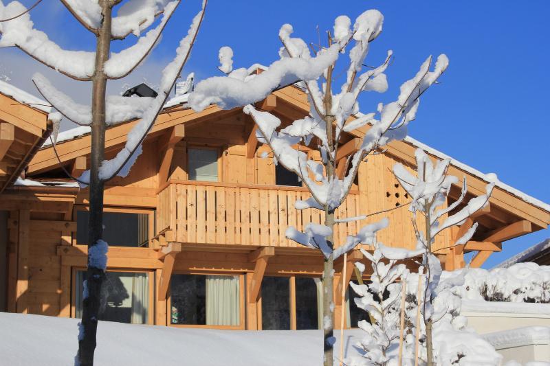 Chalet Poya in Winter