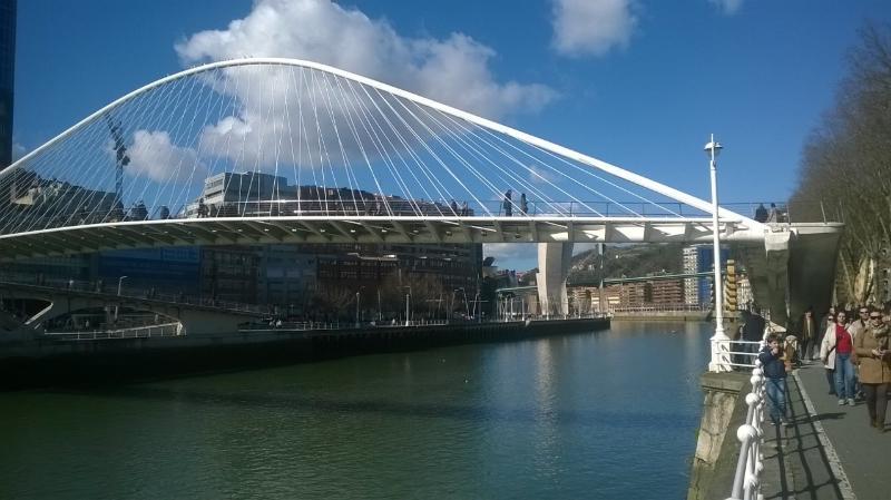 området av ria, calatrava gångbro och guggenhein fonden
