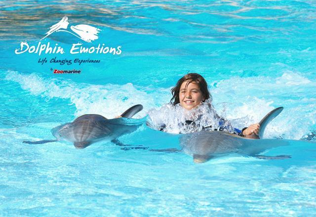 Zoomarine-zwemmen met dolfijnen