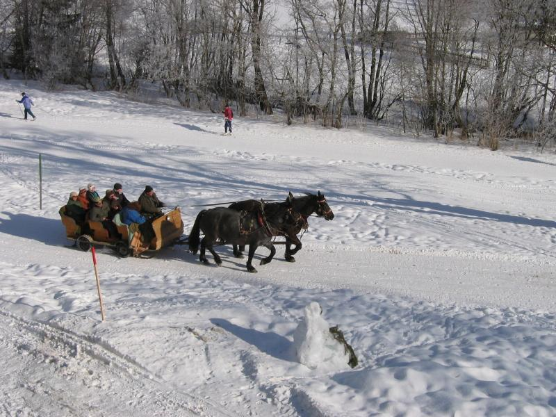 The sleigh ride track passes within 10m of Haus Heidi