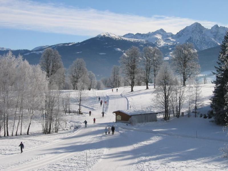 In winter, the cross country piste and walking paths are within a few metres of the house