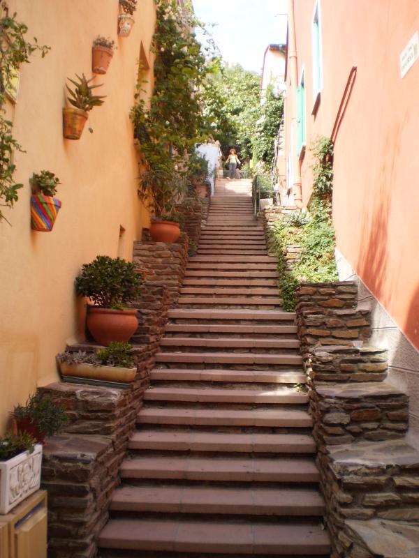 Vieille ville de Collioure