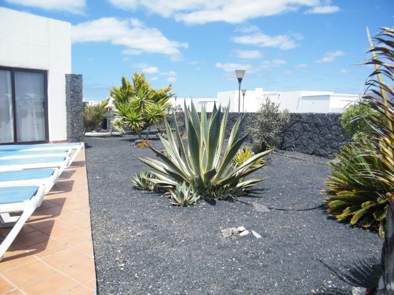 Tropical front garden for your enjoyment. Raised grounds and lava walls. Complete privacy.