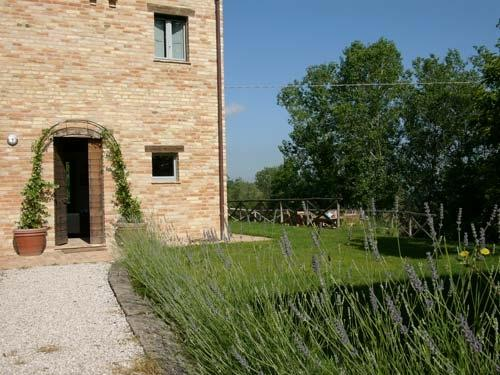 Front of house - lavender path