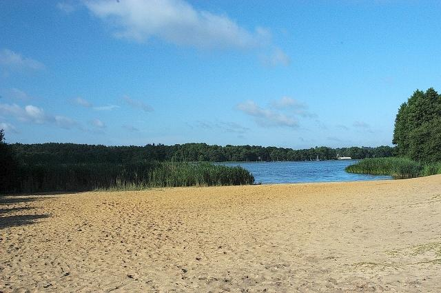 Frensham Ponds with extensive sandy shores, perfect for swimming on a hot day