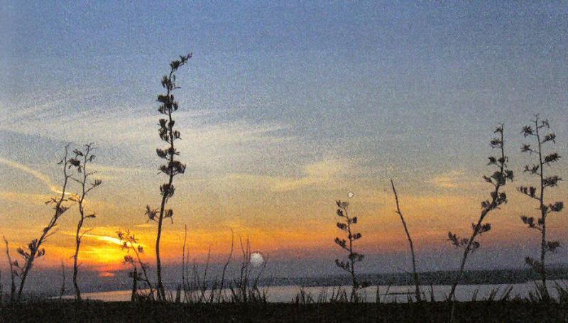 Sunset over Erris