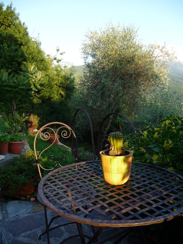 Enjoy your first cup of coffee under a rising sun - facing south Casa Michele enjoys day long sunshi