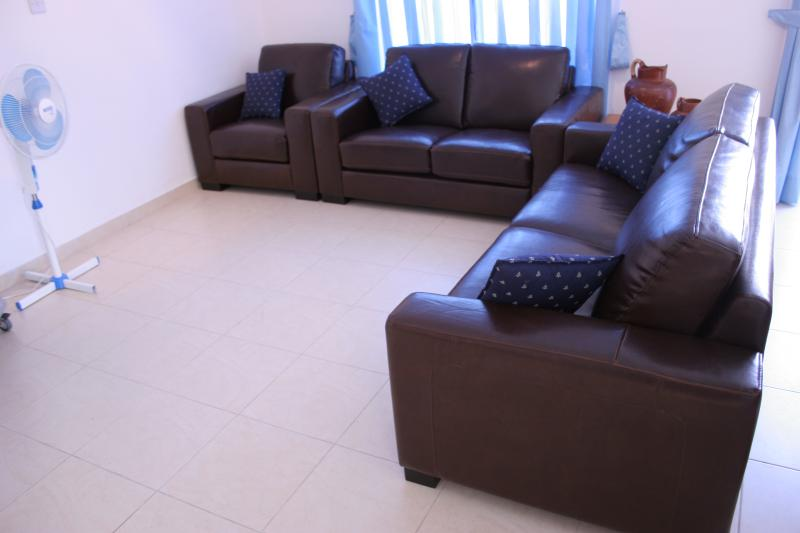 Enjoy the comfort of leather settees