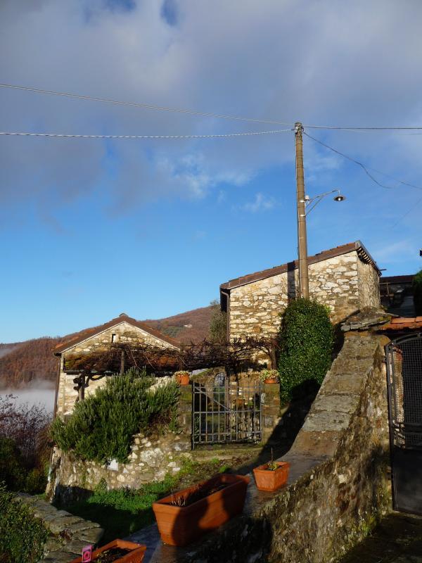 The village of Luscignano
