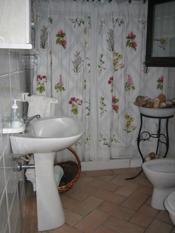 Large second bathroom with walk in shower