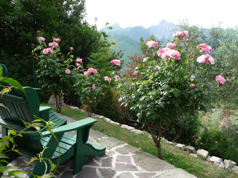 Second stone flagged terrace and garden for relaxing and enjoying the views
