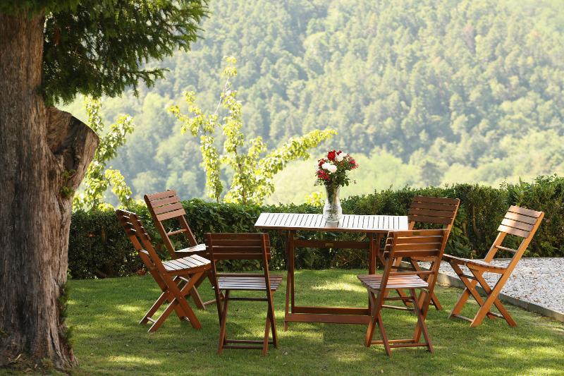 Deer Manor (v054), holiday rental in Colle di Buggiano