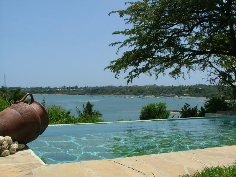Private Pool for Villa Oleander