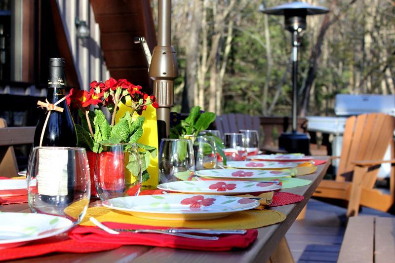 Desfrutar de um jantar fora na tabela que pode acomodar 14 no deck enorme lado