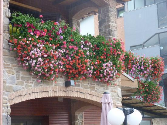 B&B Massari, holiday rental in Scoppito