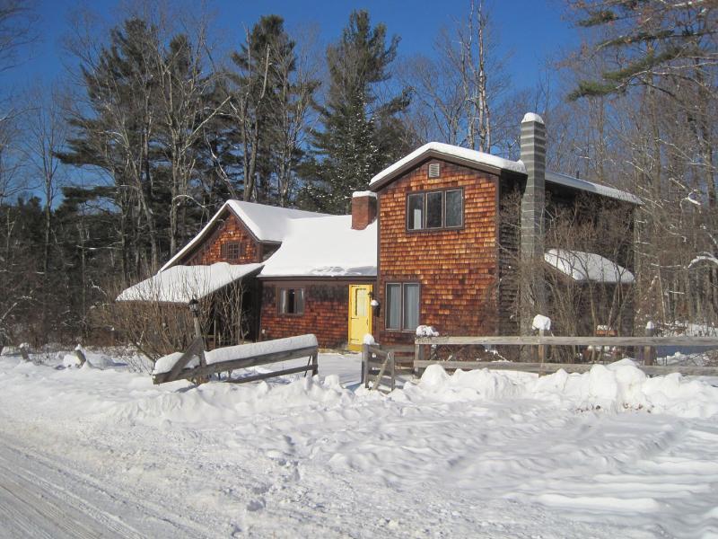 La casa dell'artista in inverno.