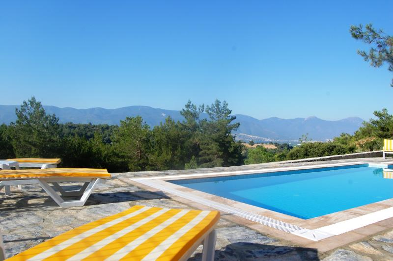 Stunning views from the pool of the pine forest and surrounding hills