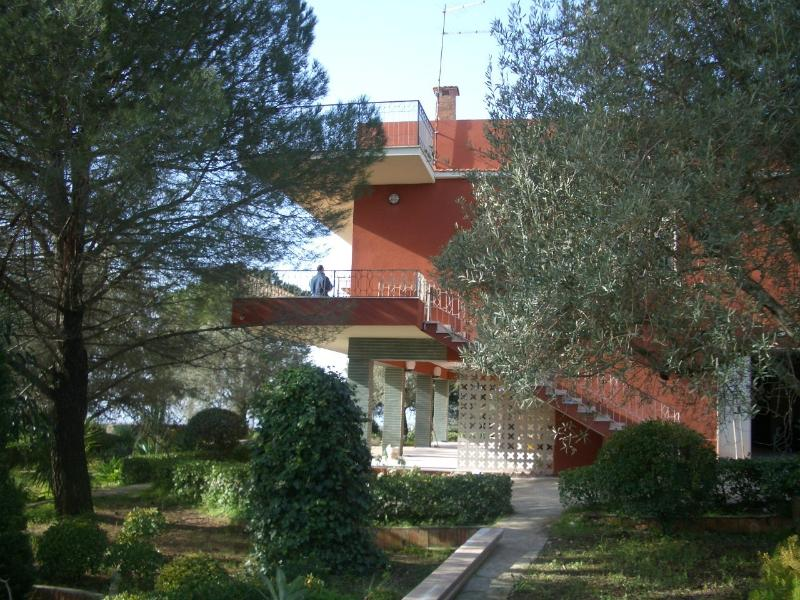 Villa ad Avola Antica - 450 mt s.l.m.