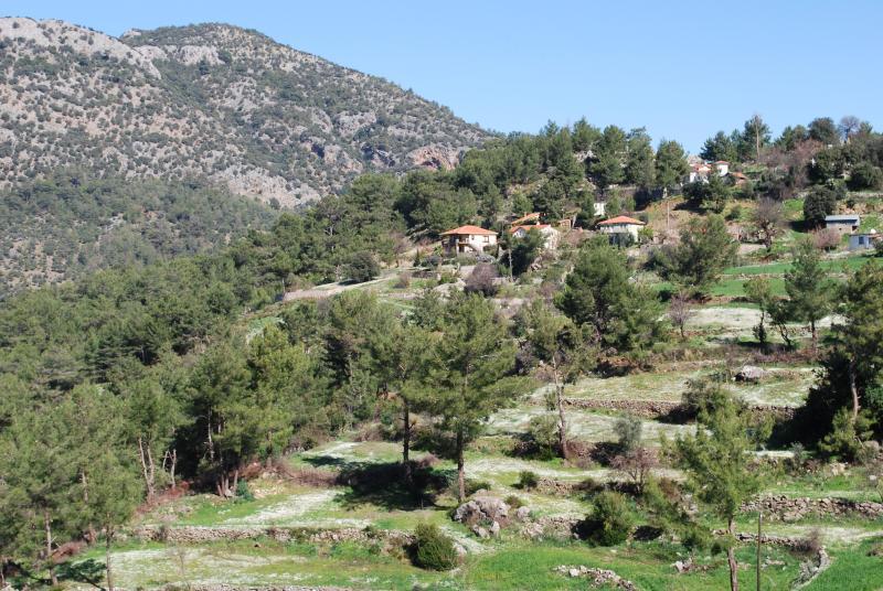 Gokbel terraces