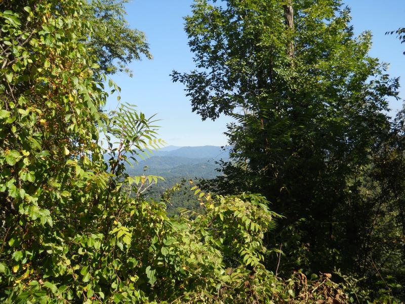 Diep in het hart van de Blue Ridge Mountains