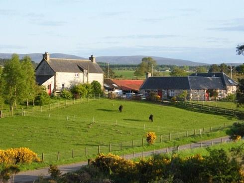 Balblair Farm and Self Catering Cottages