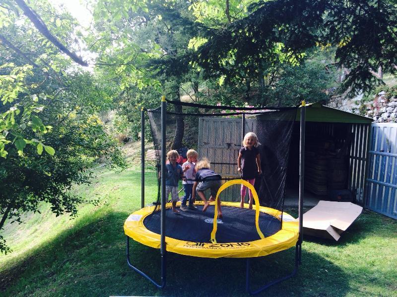 The trampoline