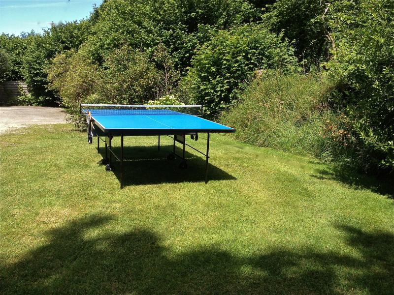 La table de ping-pong