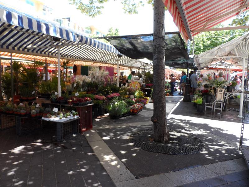 Flor del mercado Saleya curso 30 m