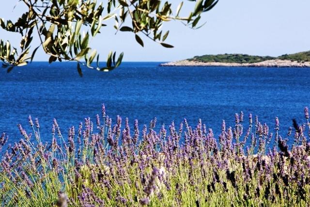 Villa Tempera, location de vacances à Island of Vis